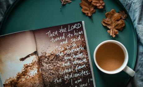 Weekly Sermon – November 29, 2020
