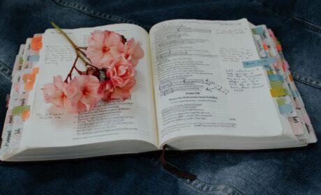 Weekly Sermon – September 20, 2020