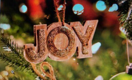 Weekly Sermon – December 20, 2020
